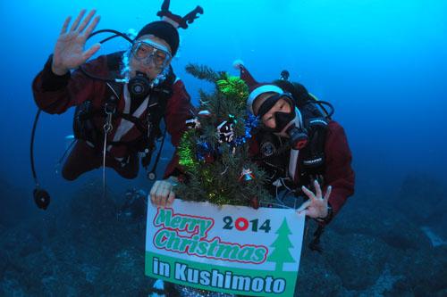 住崎 海中クリスマスツリー2014