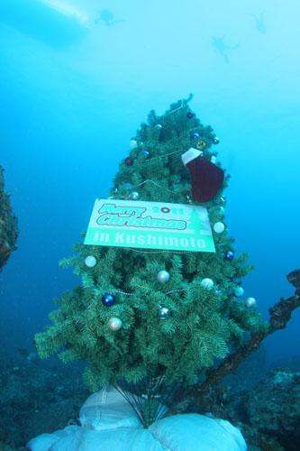 水中クリスマスツリー設置 その5