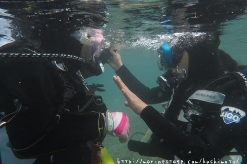DM講習 体験ダイビング