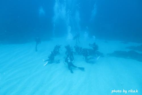 イスズミ礁 みんな集まってるのは