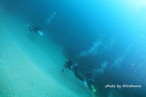 イスズミ礁 今日の一枚
