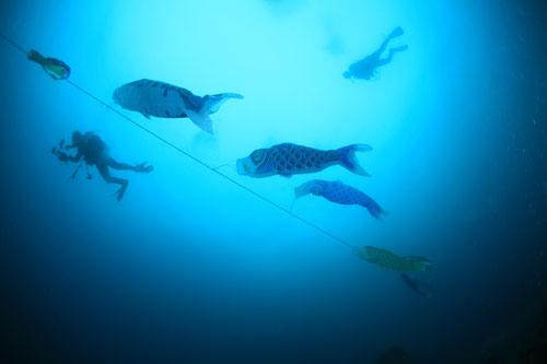住崎 鯉のぼり設置2014