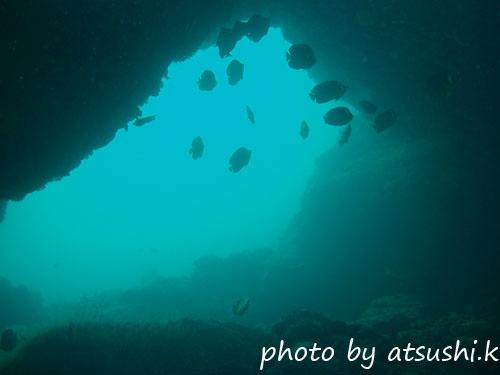 イスズミ礁 アーチとチョウチョウウオ