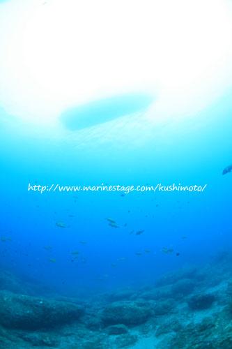 住崎 透明度最高!水底から船が丸見えだった