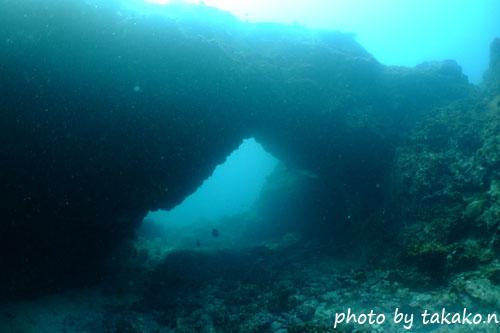 イスズミ礁 アーチ