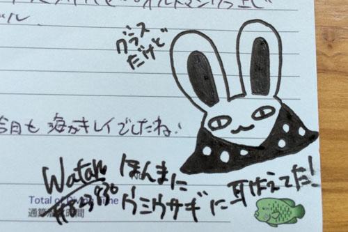 ウミウサギさん