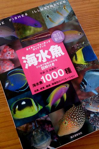 新しい図鑑「海水魚」
