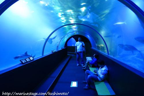 串本海中公園 水中トンネル