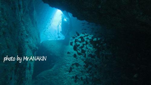 浅地 洞窟ダイブ