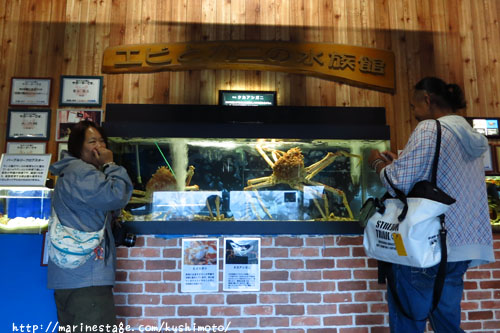エビカニ水族館