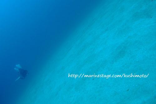 双島沖北の根 ブルー&ホワイト
