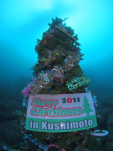 今年のクリスマスツリー2