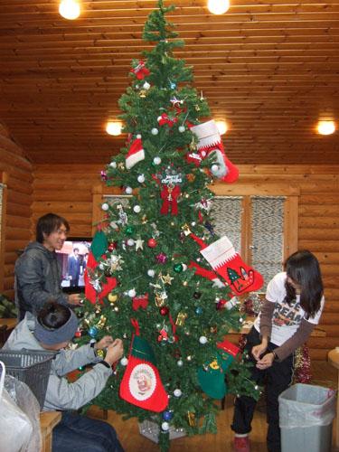 クリスマスツリー準備中!