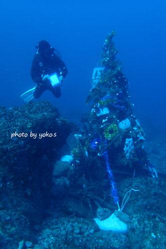 住崎 海中クリスマスツリー20141207