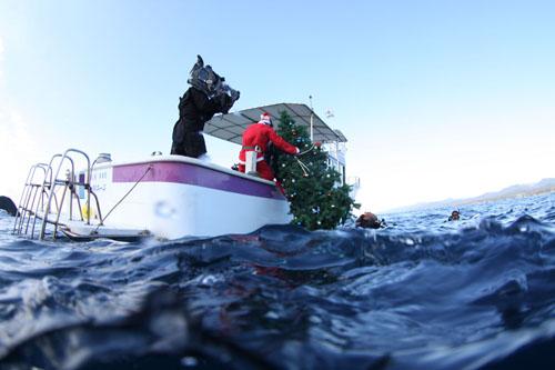 水中クリスマスツリー設置 その1