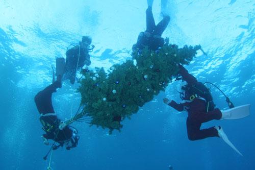 水中クリスマスツリー設置 その2
