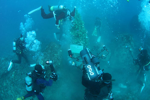 水中クリスマスツリー設置 その3