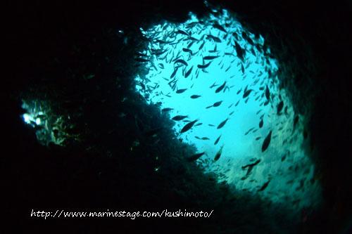 中黒礁 かろうじて抜けれるアーチ